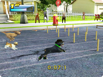 Dogs racing on street.
